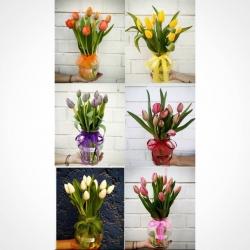 Muy buenos dias~ Cuál es tu color favorito..?🌷#tulipánes